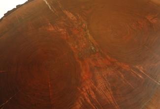 Roy-Western-Walnut-Coffee-Table-double-tree-top